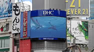 东京涩谷十字路口DHC Channel电子屏